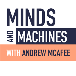 minds and machines-Logo